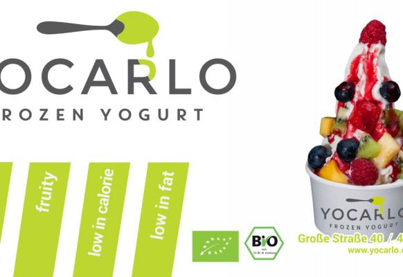 2015-07-06 – Banner YOCARLO – 115×60 – EN